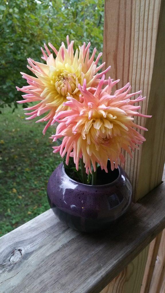 Ikebana vase with dahlias.